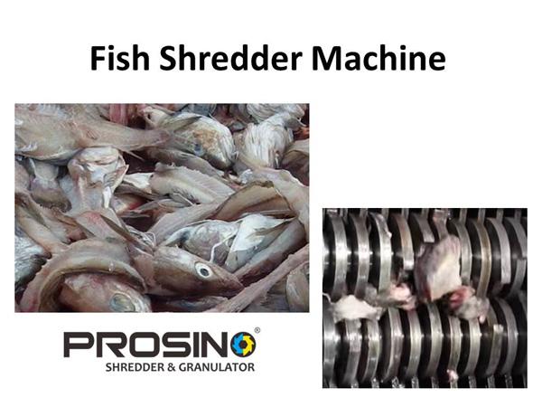 Fish Shredder Machine, Fish Waste Shredder - PROSINO